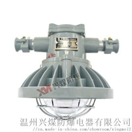 DGS24/127L(A)矿用隔爆型巷道灯