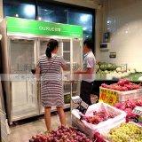 东莞超市用冷柜哪个牌子好