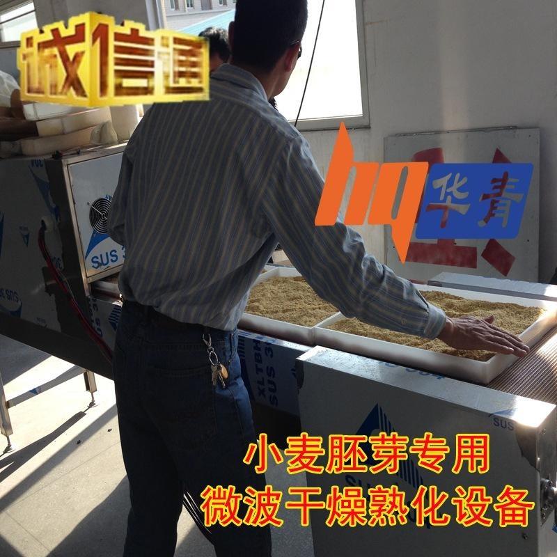 家畜饲料加工设备 大豆微波熟化设备 快速加热 微波大豆脱腥技术