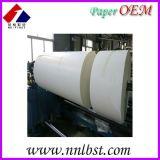 135-230g甘蔗浆纸杯淋膜纸