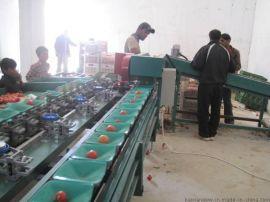 猕猴桃水果分选机猕猴桃称重分级设备