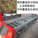 全自动微型薯土豆种直径分选机