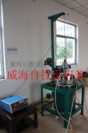 专业生产厂家 威海自控 实验室用高压反应釜