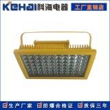 CCd97防爆免維護節能照明燈