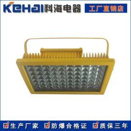 CCd97防爆免维护节能照明灯