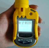RAE华瑞二氧化碳检测仪 PGM-1850CO2检测仪