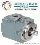 进口叶片泵|进口高压叶片泵|巴赫(欧洲)知名品牌