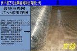 铁丝镀锌改拔丝电焊网 河北方达1/2电焊网