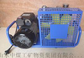呼吸器充气机产品详情