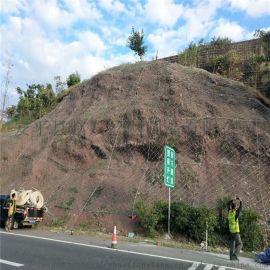 公路防护网-公路边坡防护网-公路边坡防护网生产厂家