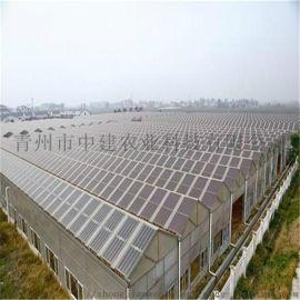 太阳能温室 光伏温室 温室大棚厂家 温室工程