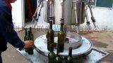 青州惠联虹吸式灌装机半自动酱油醋灌装机
