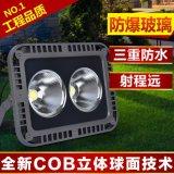 AE照明灯具COB投射灯聚光灯塔吊灯广场照明灯具泛光灯投光灯100W