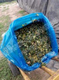 唐山全自动玉米秸秆打包机青储打包机