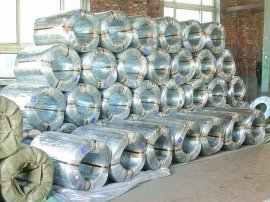 天津天康金属制品有限公司供应镀锌铁丝,技术精湛致力于全球销售
