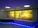 广州欧毅建材——OY酒吧隔墙自贴投影幕