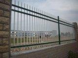 30年老廠專業生產鋅鋼護欄網