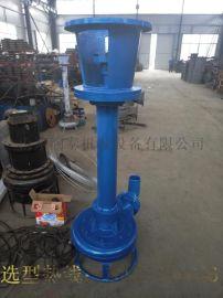 立式杂质泵-工程施工排水泵-铁锈输送泵