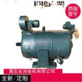 JZS2 9-1-55/18.3KW全新臥式電機