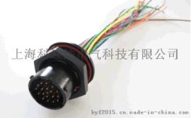 电动汽车高压线束-新能源汽车高压线束