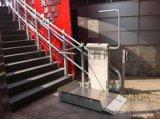 安慶市 迎江區啓運熱銷垂直無障礙升降機 家用電梯