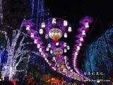 南京华亦彩灯展上门制作免费设计灯会灯组灯光节厂家