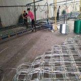 河北绿化喷播挂网 主动边坡防护网 格栅网现货厂家