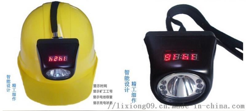 BAD308防爆數碼頭燈