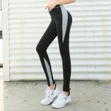 新款瑜伽裤女紧身提臀网红健身运动裤速干蜜桃臀长裤