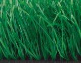 山东蜂动力体育器材厂家供应人造草坪