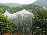低價出售40目防蟲網 蔬菜大棚防蟲網 果園防蟲網 通風網