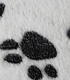 厂家直销珊瑚绒面料,珊瑚绒毛毯,印花珊瑚绒,胶印珊瑚绒