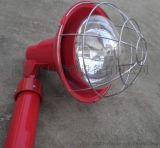 CXTG64  燈/投光燈