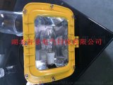 EYF8900-W50防爆節能長壽無極燈