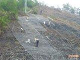 厂家供应山体专用主动防护网¥吉林山体专用主动防护网