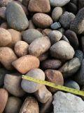 河北石家莊鵝卵石批發 鵝卵石廠家 鵝卵石價格 一噸起發貨13832111494