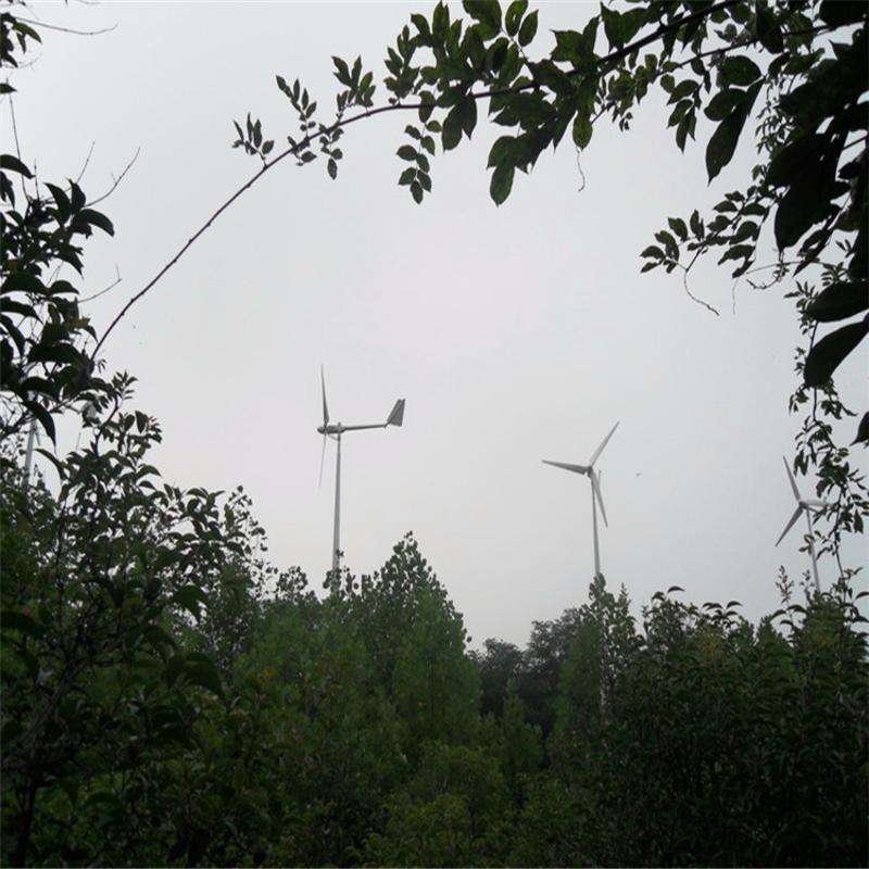 供应建筑物节能率** 晟成 FD-500W 风力发电机 节省用工全自动
