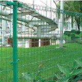 振鼎 橋樑雙圈鐵絲欄 公園花園裝飾圍欄