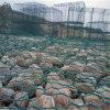 四川石籠網,石籠網防護作用,成都石籠網廠家