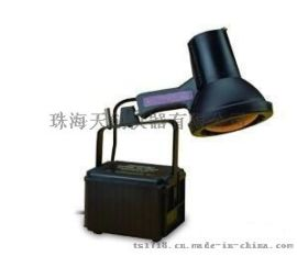 SB-100P高强度紫外线灯,紫外线灯黑光灯