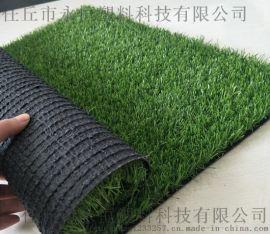 人工草坪 滄州人造草坪廠家 幼兒園足球場草坪直銷