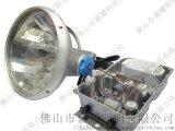 飛利浦1000W投光燈MVF403體育館燈具