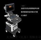 大为DW-F5彩色超声诊断仪
