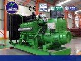 供应300系列沼气发电机组
