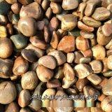 本格供应 园林铺路鹅卵石 鱼缸水景盆栽鹅卵石