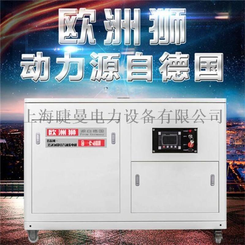 欧洲狮35kw静音汽油发电机