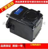 DENISON丹尼遜T6DCC 031 008 006 1R00 C100葉片泵