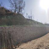 山体滑坡边坡防护网,山体边坡防护网,滑坡防护网厂家