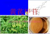 南京曼格斯黄芪甲苷98%