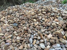 鹅卵石 广东鹅卵石厂家 园林草地鹅卵石批发价格